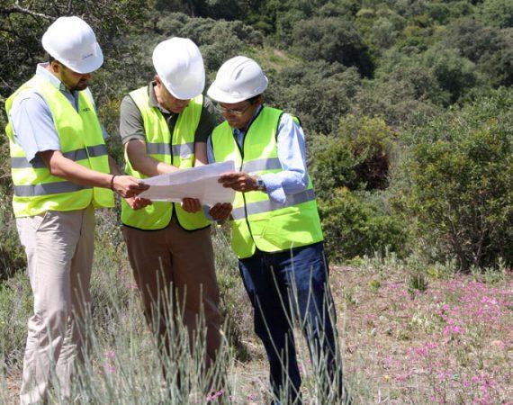 Asociación Andaluza de Empresas Forestales y Paisajísticas de Andalucía