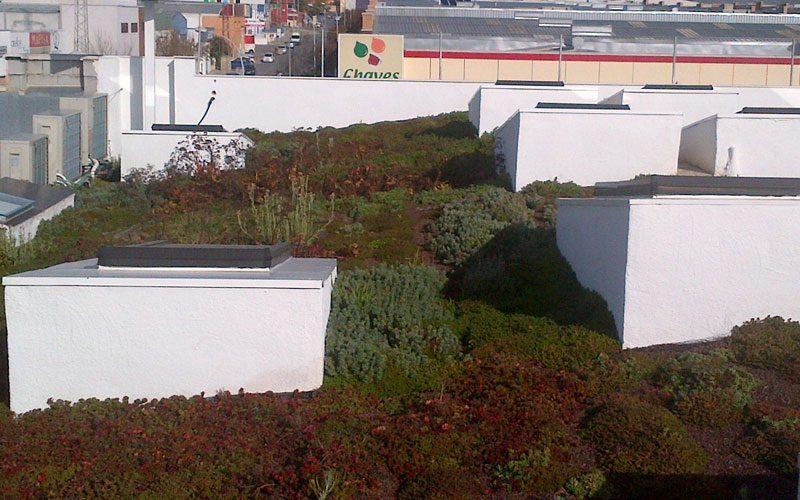 Jornada de cubiertas verdes y ajardinamientos verticales