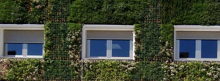 Cubiertas y fachadas vegetadas