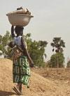 Gran Muralla Verde para el Sáhara y el Sahel